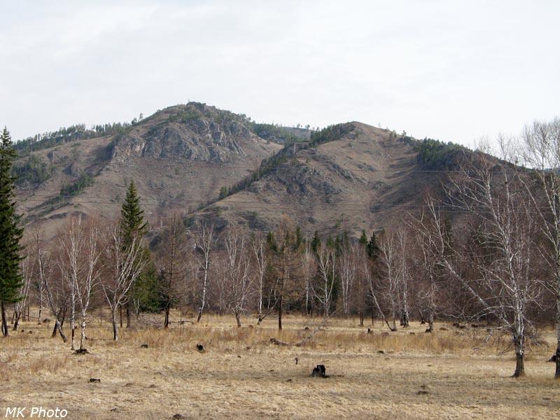 Горы становятся выше и лесистей