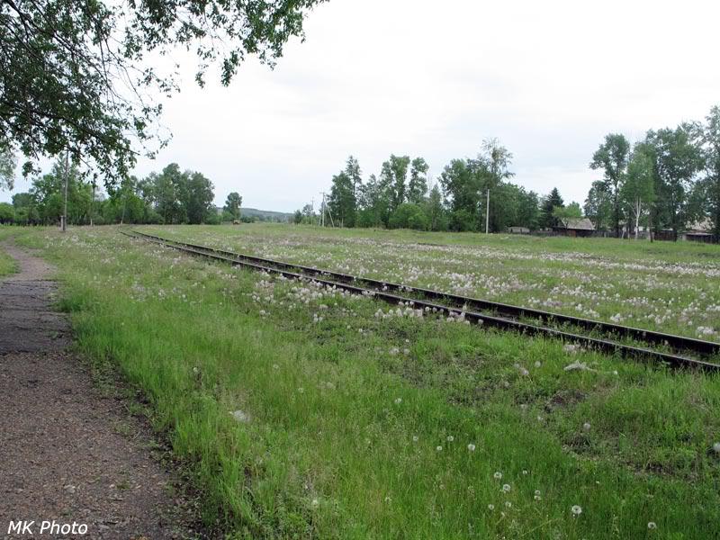 Станция Райчихинск