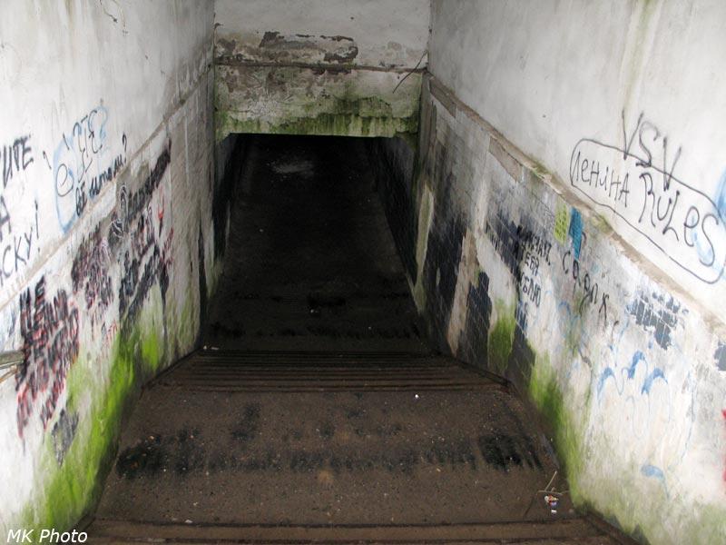 Подземный переход на платформе Обсерватория
